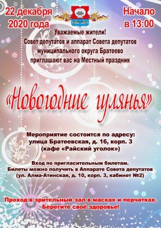 Новогодние гулянья Братеево